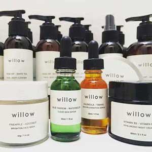willowtree-set-2020